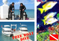 Scuba Diving Experience for Beginners+FREE Boat Dive