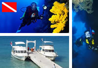 Scuba Diving Aqua Safari Two Tank Dive Trip