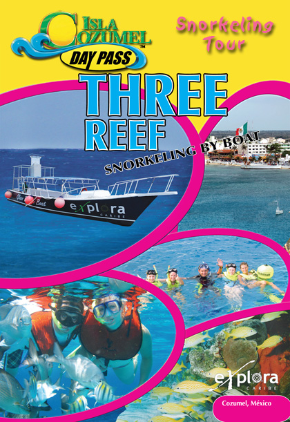 Three Reef Snorkel Tour